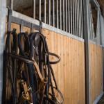 Box des chevaux du gîte équestre d'En Lanet dans le Tarn
