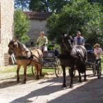 Gîte équestre dans le Tarn