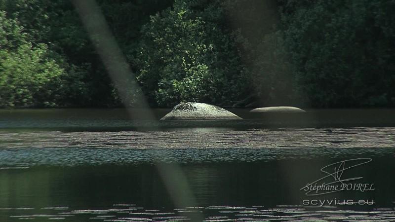 Sidobre : granit au lac du merle