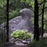 Sidobre : le roc de l'oie