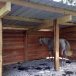 Gîte équestre, un nouvel abri pour les chevaux