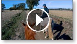 Balades à cheval dans le Sud-Ouest