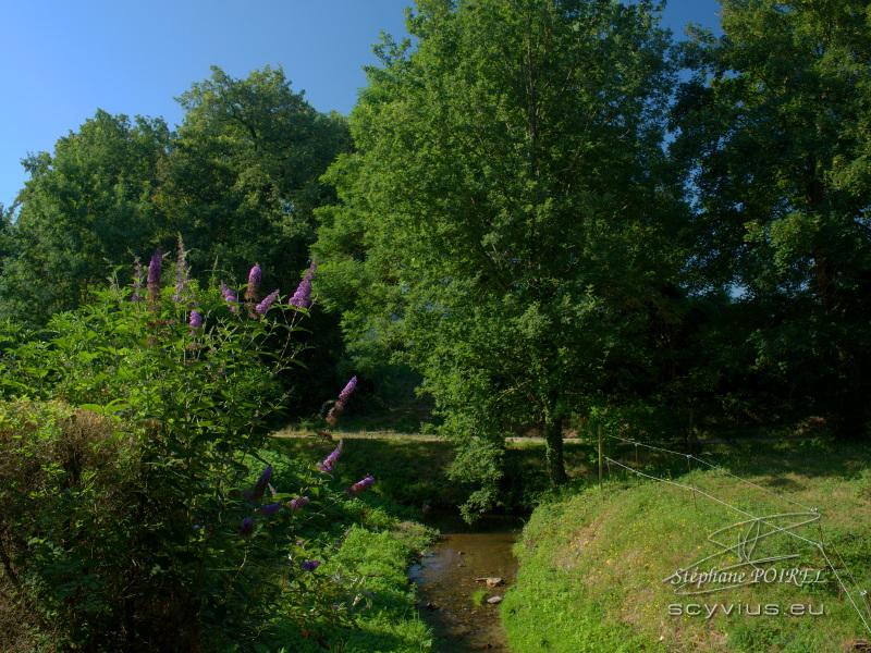 Le ruisseau du Relais d'En Lanet