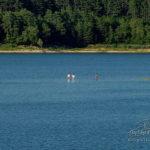 Baignades au lac de Saint-Ferréol